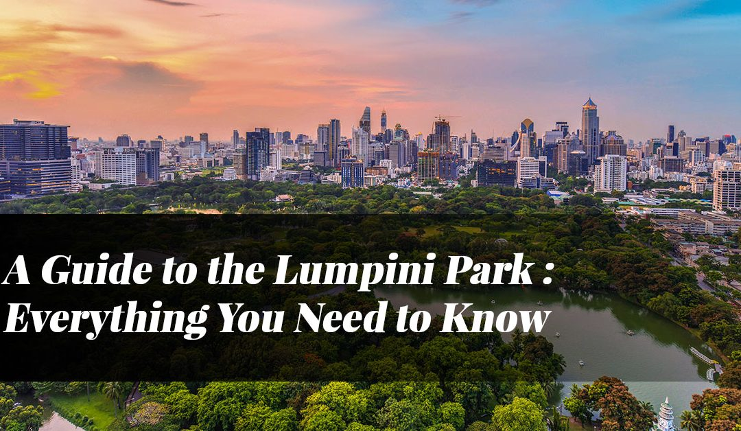 A Guide to the Lumpini Park: Everything You Need to Know